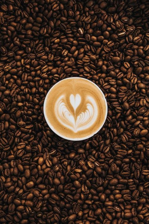 Le café est toxique