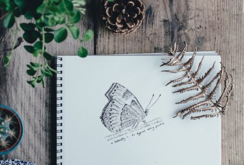 dessiner-annee-sabbatique