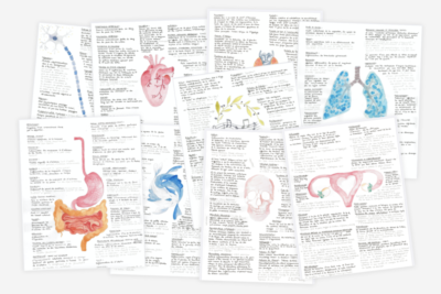 Pack-illustrations-fiches-pathologies